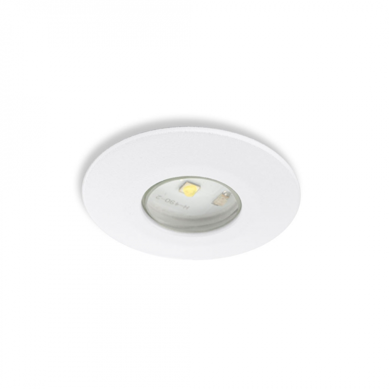 Emergency Lighting Luminaire ATOM FL