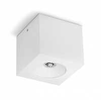 Emergency Lighting Luminaire KWADRA SU
