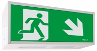 Emergency Lighting Luminaire ALU