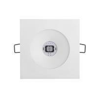 Emergency Lighting Luminaire KWADRA FL